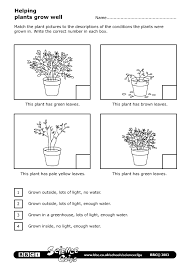 science worksheets for grade 1 plants autism tank science unit