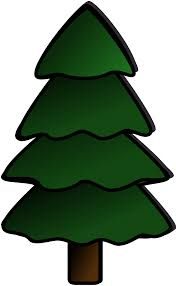pine tree clip art many interesting cliparts
