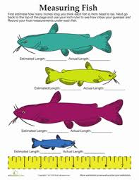 measuring fish worksheet education com