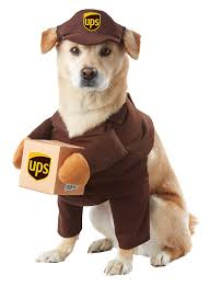 12 dog halloween costumes so your furry friends can celebrate too