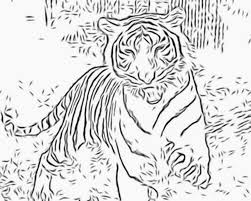 lovely design tiger animal coloring pages detailed coloring pages