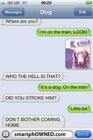Dog Text Memes - 21 best texts from the dog