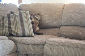 Steam Clean Sofa by How To Clean A Yucky Couch