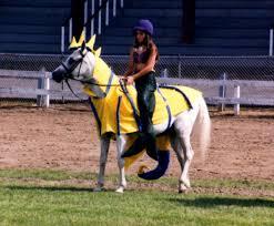Seahorse Halloween Costume Expert Equestrian Articles Halloween Costumes Horses