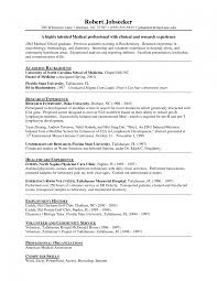 resume for internship sles resume objectives internship objective statement good for