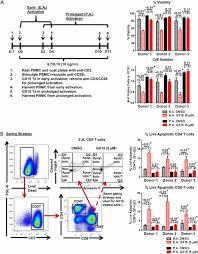 pan bcl 2 inhibitor gx15 070 obatoclax decreases human t