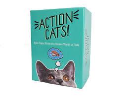 cat rage room actioncatsboxstanding jpg