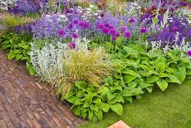 beautiful flower bed border garden with mixed bulbs ornamental