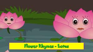 lotus rhyme flower rhymes for children nursery rhymes for kids