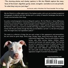 american pitbull terrier book we are pitbulls coffee table book dog park publishing
