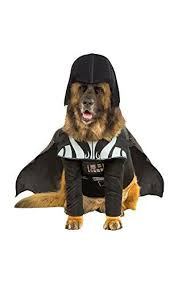 Halloween Costumes For Dogs Les 748 Meilleures Images Du Tableau Halloween Costumes For Dogs