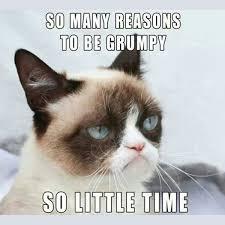 Grumpy Cat Monday Meme - grumpy cat meme so little time too be grumpy