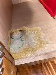 kitchen cabinet sink used showed up recently inside a rarely used kitchen cabinet
