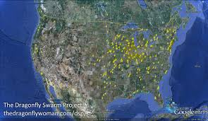 Maps Com Yearly Swarm Maps The Dragonfly Woman