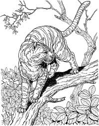 printable difficult coloring pages jungle animals printable