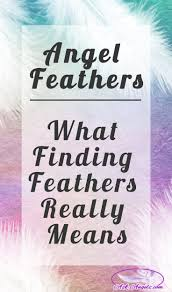 Meaning Of Home Decor Best 25 Feather Meaning Ideas On Pinterest Superstitious