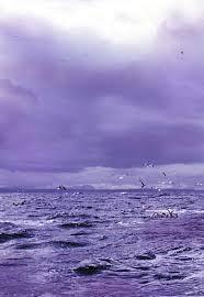 Hues Of Purple 2856 Best Purple Images On Pinterest All Things Purple Purple