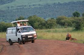 Which Side Of The Envelope Does The Stamp Go On Kenya Wildlife Safari Wilderness Inquiry
