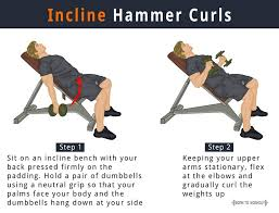Sit Up Bench Benefits - incline hammer dumbbell curls benefits how to do pictures