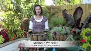 amateur gardening how to plant a winter hanging basket youtube