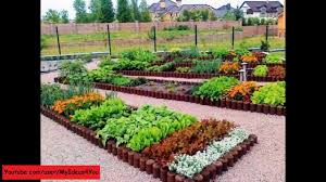 raised bed garden backyard vegetable garden design ideas youtube