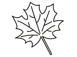 leaf coloring pages preschool coloring pages