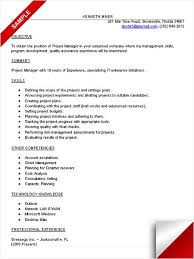 Best Project Manager Resume by Best 25 Project Manager Resume Ideas On Pinterest Project