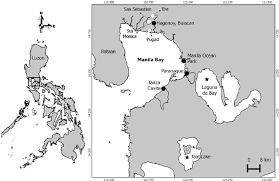 where s mudjekeewis dalisay santos ph d applied marine biosciences