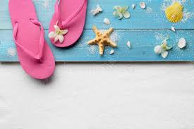 seashell flip flops flip flops with seashells on stock photo image of plastic