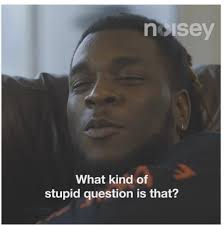 Stupid Boy Meme - what kind of stupid question is that burna boy to reporter