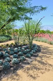 Succulent Rock Garden by Garden Design Garden Design With Succulent Garden On Pinterest
