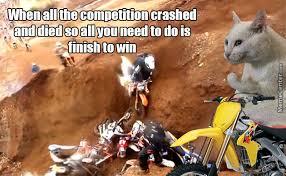 Success Cat Meme - semi evil success cat says winning by process of elimination is