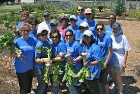Botanical Gardens Volunteer by Genworth Generates Progress In The Community Kitchen Garden