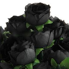 black roses black roses co uk
