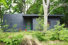 reader rehab cabin color that takes its cue from the landscape