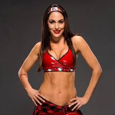 374 best wwe images on pinterest wrestling a cell and brooklyn