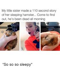 Little Sister Meme - my little sister made a 110 second story of her sleeping hamster