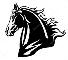 mustang horse drawing horse head black and white profile u2014 stock vector insima 13706695