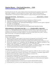 it audit intern resume example marketing intern resume free