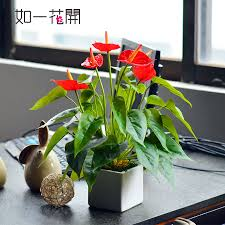 Office Desk Plant by Mini Artificial Plants Office Desk Decorative Flower Dining Table