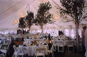 trees for decoration at weddings ribbons hanging from chandeliers
