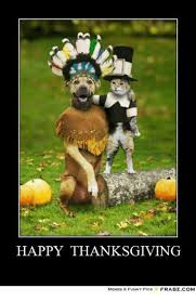 Funny Thanksgiving Meme - 25 best memes about thanksgiving memes funny thanksgiving