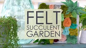 alison u0027s succulent wall garden video hgtv