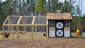 Building Backyard Chicken Coop How To Build A Backyard Chicken Coop Media Magazine