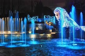 Botanical Gardens Atlanta Lights Atlanta Botanical Gardens Lights Webzine Co