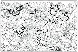 detailed butterfly coloring pages for adults butterfly coloring pages for adults best coloring pages for adults