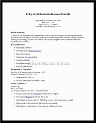 Profile Summary Resume Examples by Resume Profile Summary Sample Resume Format