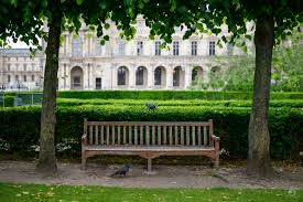 wooden park bench and ravens background freeartbackgrounds com