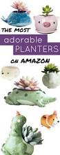 Cute Flower Pots by The Cutest Critter Flower Pots On Amazon Small Plants Planters