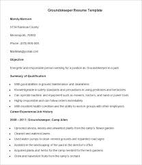 free professional resume templates professional resume template 60 free sles exles format